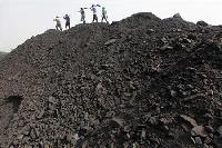 UK fund files petition against Coal India, ministry