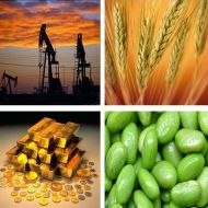 Oil, grains seen top 2011 commodities picks: Barclays Capital