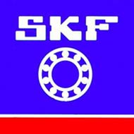 SKF India Q1 PAT down at Rs 47 cr