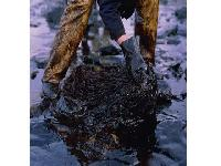 Oil spill aftermath: A tale of three plaintiffs