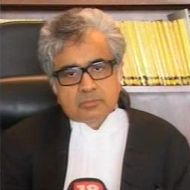 Harish Salve, Senior Advocate, SC
